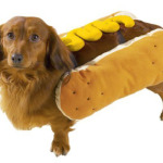 pet_costume_hot_dog