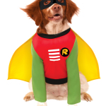 pet_costume_robin