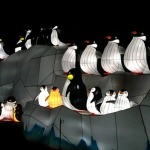 China_Lantern_penguins