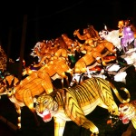 China_Lantern_safari_animals