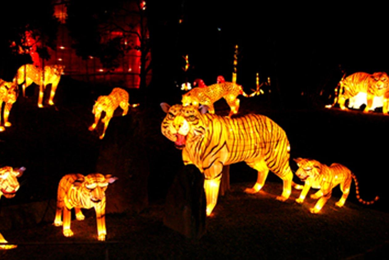 Animal Lanterns Party Supplies China